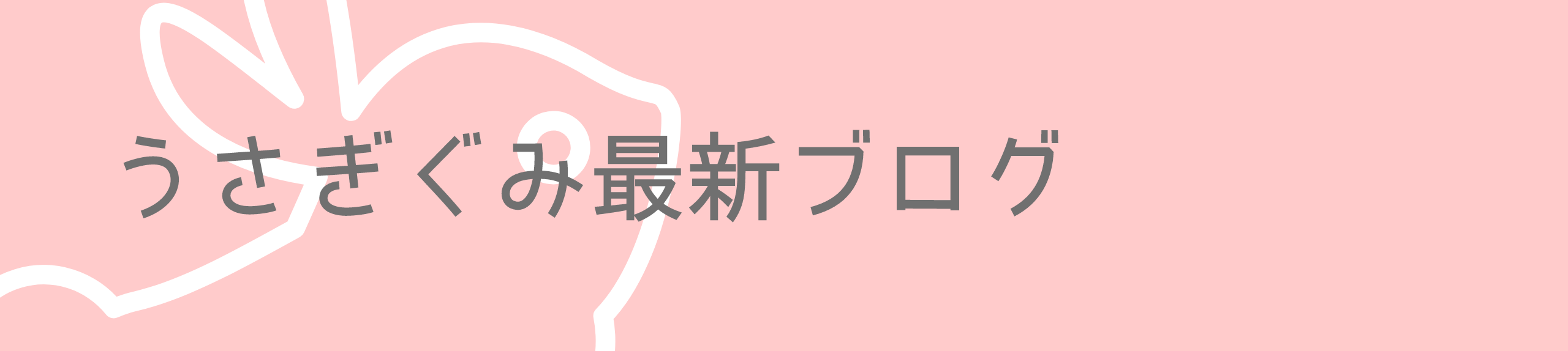うさぎぐみ最新ブログ