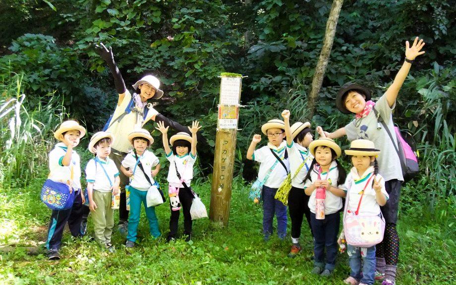 ひまわり幼稚園|うさぎ組